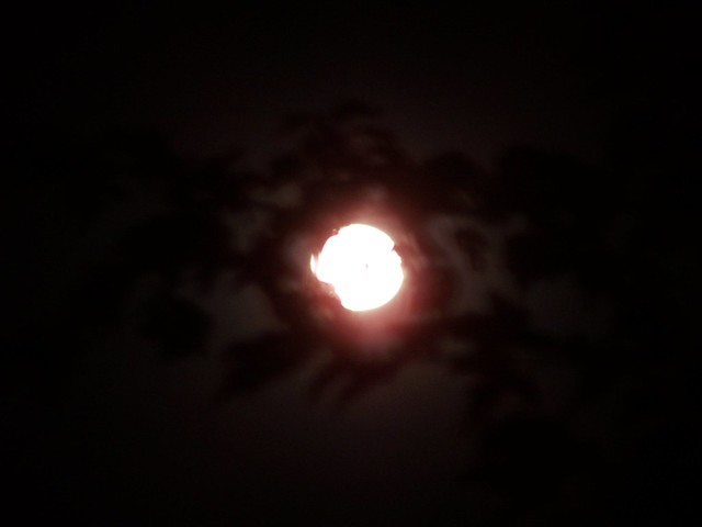 Blurry Moon