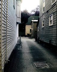 rainy alley greys