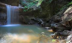 Cascades, Big Basin Redwoods State Park (jauderho) Tags: california original usa 20d topc25 topv111 canon geotagged topc50 2006 bigbasinredwoodsstatepark jauderho i500 geo:lat=37179347 geo:lon=122271636