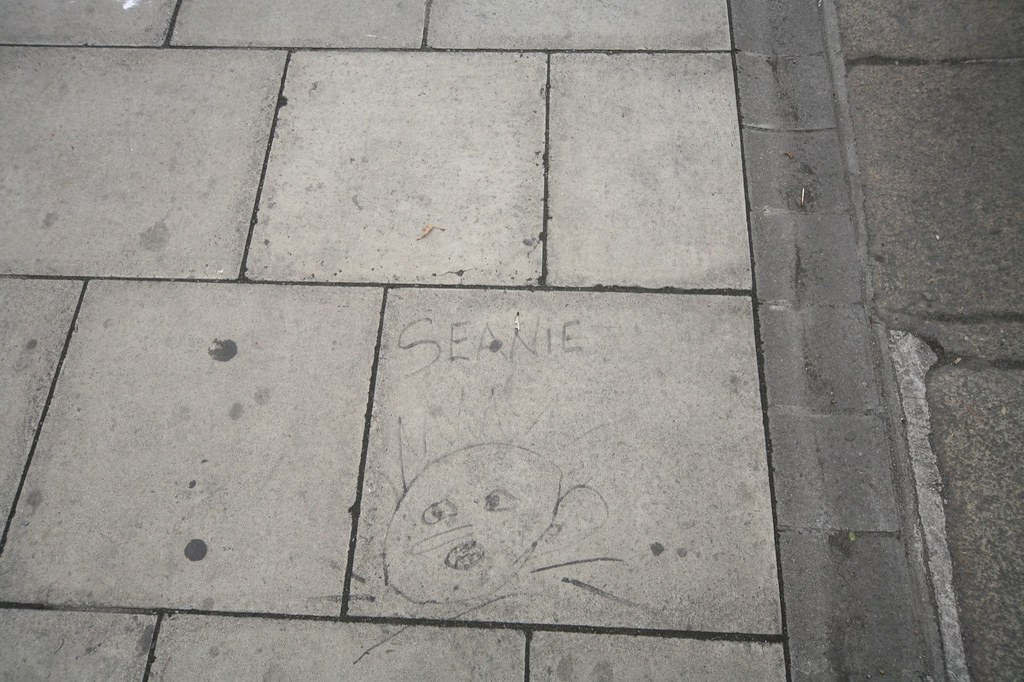 SEANIE - STREET ART BY A YOUNG BEGGAR