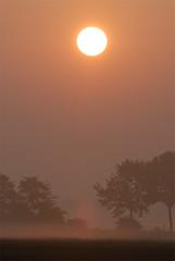 Rising sun (m. geven) Tags: sunrise nederland d200 zonsopkomst 200400mmf4gvr 200400f4gvr duivensebroek