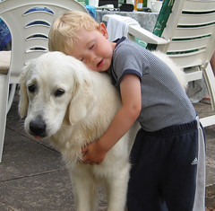 Ditte and Oliver (Ingrid0804) Tags: friends love dogs kids goldenretriever happy golden hug affection happiness retriever iloveyou tender tenderness bestfriends whitegoldenretriever englishgoldenretriever 100commentgroup panoramafotogrfico memorycornerportraits