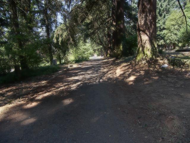 HDR Road