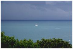 Lions Day (AWD Alessandro Vecchi) Tags: sea storm nature boat barca mare natura tuscany toscana cala temporale alessandrovecchi