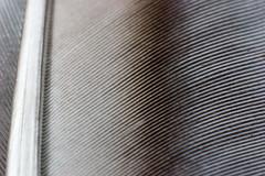 binding (*Hairbear) Tags: shadow macro dof canon300d small tubes feather 2006 line september extension canon50mmf18 kenko kenkoextensiontubes