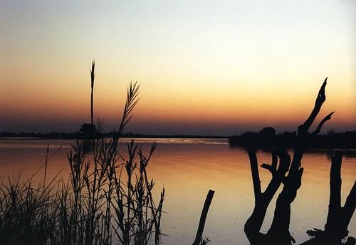 Botswana Sunset