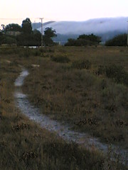 20060910T191000 (earthasa) Tags: sanfrancisco california park sunset fog bay sundown dusk trails paths thick rolling millvalley marshes rollingin ctxflickr