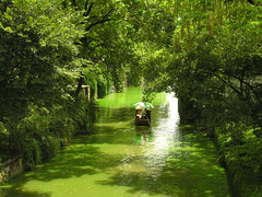 Suzhou - Tiger Hill (yewco) Tags: china trees green water boat canal suzhou calm   tigerhill  jiangsuprovince specnature