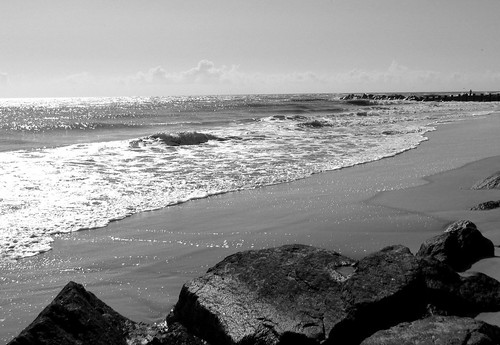 This photo also appears in. The Beach (Set) · black and white (Set)