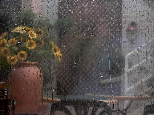 آفتاب، زیر بارون، عرق می کنه!/ رجبعلی محبی