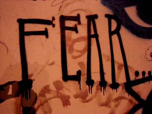 Fear! Fear! Fear!(Photo: Wilderdom on flickr)