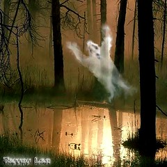 Swamp Gas (Terry_Lea) Tags: halloween scary lol ghost haunted swamp casper swampthing lmfao flyingsquirrel hauntedforest ufreak terrorlea ghostlyshadow heygotagme2