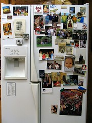 Stainless Steel And Fridge Magnets 7 Solutions