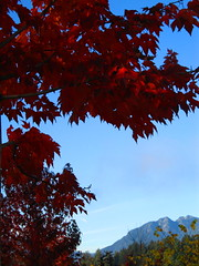 ([ jennifer ]) Tags: fall vancouver coalharbour