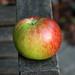 apple picking 3