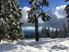 Snow On The Mountains (aldrinadira) Tags: snow mountain trees forest seymour white tobogganing sled