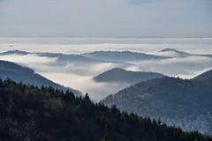 Mer de nuages sur le Pays de Hanau (Excalibur67) Tags: nikon d750 sigma apo70200f28exdgoshsm paysage landscape brouillard fog nature nuages cloud mountain montagne vosgesdunord
