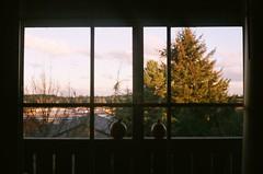 views (meghan.chico) Tags: minolta himatic7s 35mm filmisnotdead