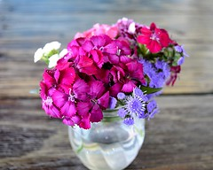 Posies (pjpink) Tags: flowers vase bouquet colorful posies blacksheep restaurant beaufort northcarolina nc carolina crystalcoast smalltown may 2018 spring pjpink 2catswithcameras