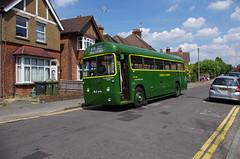 IMGP1572 (Steve Guess) Tags: guildford surrey england gb uk bus rf644 nle644 aec regal iv rf london country lcbs
