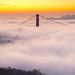 San Francisco Morning Fog