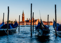 Evening light (matthew:D) Tags: venezia canal urban bridge travel wunderlust water italy venice gondola boat culture wonderlust