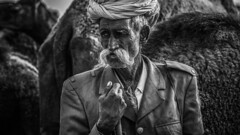 Herder | Pushkar, Rajastan. 2012 (ayashok photography) Tags: rangderajasthan nikon ayashok ayashokphotography nikond300 nikond700 nikkor24120mmvr rajasthan pushkar camelfair camels market india rajastan rajasthani aya0514