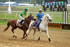 "2018-07-15 (32) r2 Kevin Gomez on #2 Towson (JLeeFleenor) Tags: photos photography md marylandracing laurelpark marylandhorseracing track jockey جُوكِي ""赛马骑师"" jinete ""競馬騎手"" dżokej jocheu คนขี่ม้าแข่ง jóquei žokej kilparatsastaja rennreiter fantino ""경마 기수"" жокей jokey người horses thoroughbreds equine equestrian cheval cavalo cavallo cavall caballo pferd paard perd hevonen hest hestur cal kon konj beygir capall ceffyl cuddy yarraman faras alogo soos kuda uma pfeerd koin حصان кон 马 häst άλογο סוס घोड़ा 馬 koń лошадь kevingomez"