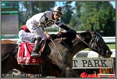 Limousine Liberal wins the Belmont Sprint (Spruceton Spook) Tags: horseracing horses belmontpark starsandstripesfestival limousineliberal belmontsprintchampionship