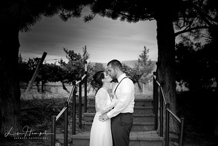 Love In The Vineyard B/W