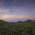 dawn | alpine meadow thumbnail
