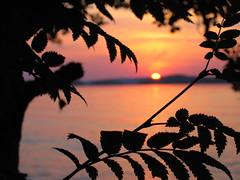 IMG_70023446678 (xJth) Tags: päijänne lake august elokuu 2004