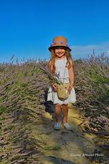 Il sorriso dal profumo frizzante!!! (Gianni Armano) Tags: lavanda sorriso lavande profumo frizzante bambina foto gianni armano photo flickr