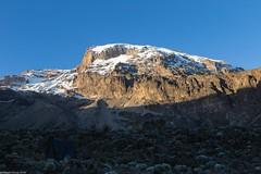 Kili_Shira_to_Barranco_21_Tanzania 4 iul18 (Valentin Groza) Tags: kilimanjaro tanzania machame trail trekking shira barranco mountain landscape