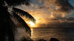 Sunset hours (Migge88) Tags: sea sonne sunset sky sony sun sonnenuntergang seychellen seychelles stein stone la digue palmen meer urlaub wolken 6500 alpha blau blue palm trees holiday paradies paradise praslin abend abendstunden