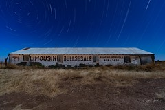 limousine bulls (Aztravelgrl (Forgotten Places Photography)) Tags: marfa startrails texas usa longexposure lowlight nightphotography