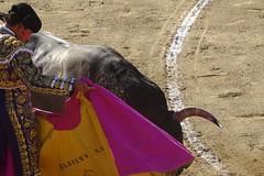 Détails de Ceret 2017 (aficion2012) Tags: ceret france francia corrida bull fight bullfight tauromaquia tauromachie toros toro taureaux escolar gill alberto aguilar torero toreador matador 2017 capa capote capear capeando capeador catalogne catalunya cataluña