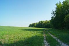 *** (PavelChistyakov) Tags: russia kaluga region road filed nature landscape village countryside rpp raw dslr digital sony alpha