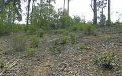 24 Bunderra Circuit, Lilli Pilli NSW