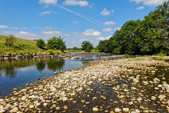 summer looks like this (scottprice16) Tags: england lancashire brungerleypark riverribble ribblevalley ribbleway clitheroe summer 2018 july weather sunny warm outdoors dry drought bedrock river walk activity coutryside rural landscape canon colour canong3x heron greyheron wildlife birds