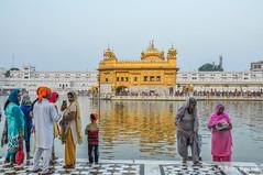 DSC_0716-2 (Ben Perek Photography) Tags: india punjab amritsar asia hindu sikh golden temple incredible beauty sunset sunrise sun gold piligrimage