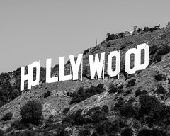 Hollywood Sign (PiccaPixel) Tags: hollywood sign hollywoodsign hollywoodhills losangeles hollywoodsignblackandwhite blackandwhite la lacalifornia california losangelescalifornia losangelesphotography hollywoodsignflickr flickrhollywoodsign