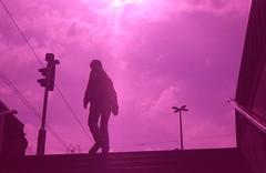 Blaha (sztomy_analog) Tags: 35mm 35mmfilm 35mmfilmphotography film filmsnotdead filmisnotdead filmphotography explorewithfilm ishootfilm analog analogphotography photography magyaranalog magyar hungarian sztomy art sztomyphoto