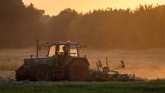 Hay Harvest (Pascal Riemann) Tags: fahrzeug ruhrgebiet abendstimmung deutschland trecker stimmung gegenlicht waltrop germany vehicle backlight eveningmood frontlighting mood
