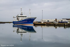 Blue (Desireevo) Tags: iceland ice island islands ijsland ijs landscape landschaft landscapes harbour höfn hofn water sea boat boats ship ships nature outdoors desireevanoeffelt holiday summer reflection reflections sky skies cloud clouds