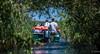 2018 - Romania - Danube Delta - Sfântu Gheorghe - Wetlands (Ted's photos - For Me & You) Tags: 2018 avalonwaterways cropped nikon nikond750 nikonfx romania tedmcgrath tedsphotos vignetting boat unesco unescoworldheritagesite unescobiospherereserve outboard outboardmotor hats ballcap lifevest vest orange orangevest water motorboat