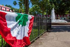 It's not Italy...It's Kennywood (kwtracyghostship) Tags: kennywooditalianday2018 kwtracyghostship flag alleghenycounty westernpa commonwealthpa