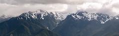 Washington Vacation - Day 2 (97 of 97) (Quentin Biles) Tags: 15028 d850 ex hurricaneridge macro nikon os olympicnationalpark sigma washington panorama