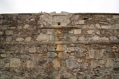 Don't Look Up! (charliejb) Tags: pendenniscastle falmouth cornwall 2018 englishheritage history castle cannon battlements