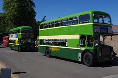 IMGP2164 (Steve Guess) Tags: ansteypark alton hampshire hants england gb uk bus rally show aldershot district dennis loline iii 488kot 462eot